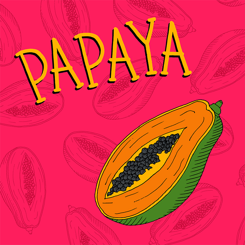 papaya illustration fruit childrens picture book